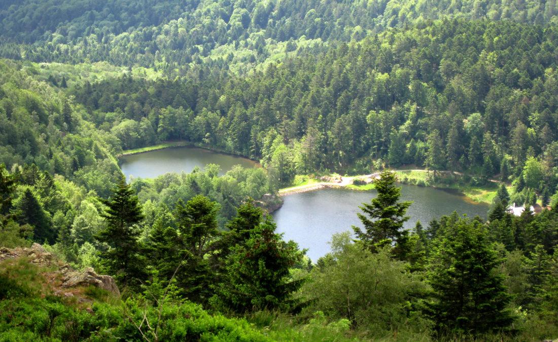 Rando, Vosges